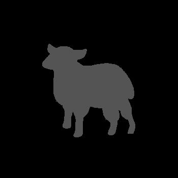 Casque d'agneau