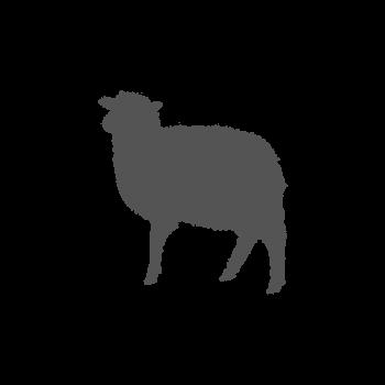 Collet de mouton